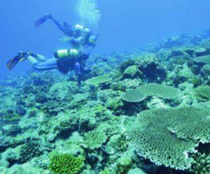 南海科學為台灣發聲