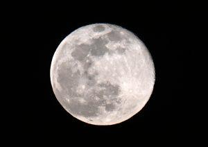 584期 2020-9-21 做月亮生意